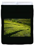 Tea Gardens Duvet Cover