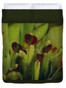 The Rare Carnivorous Sun Pitcher Plant Duvet Cover