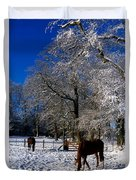 Thoroughbred Horses, Mares In Snow Duvet Cover by The Irish Image Collection