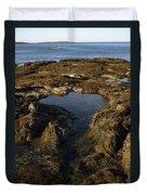 Tidepool In Maine Duvet Cover