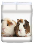 Two Guinea Pigs Duvet Cover