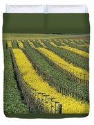 Vineyards In Californias Edna Valley Duvet Cover