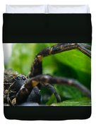 Wolf Spider And Babies 2 Duvet Cover