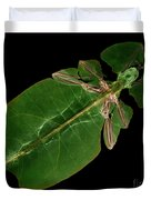 X-ray Of A Giant Leaf Insect Duvet Cover