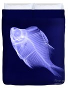 X-ray Of A Humphead Glassfish Duvet Cover