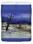 Yellowstone National Park 6 Duvet Cover