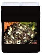 Zebra Mussels Dreissena Polymorpha Duvet Cover