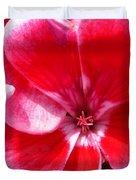 Zonal Geranium Named Candy Fantasy Kiss Duvet Cover