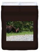 Black Bear Family Duvet Cover