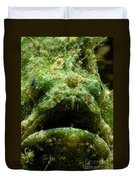 Frogfish Duvet Cover