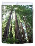 Redwoods Sequoia Sempervirens Duvet Cover