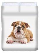 Bulldog Pup Duvet Cover