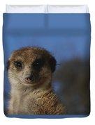 A Close View Of A Meerkat Suricata Duvet Cover