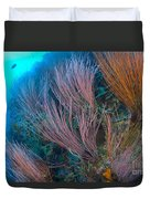 A Colony Of Red Whip Fan Corals Duvet Cover