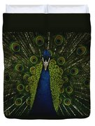 A Male Peacock Displays His Beautiful Duvet Cover