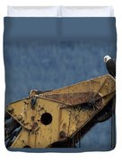 A Northern American Bald Eagle Duvet Cover