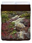 Acadia National Park Duvet Cover