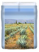 Agave Cactus Field In Mexico Duvet Cover