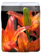 Asiatic Lily Named Gran Paradiso Duvet Cover