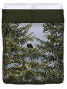 Bald Eagle Haliaeetus Leucocephalus Duvet Cover