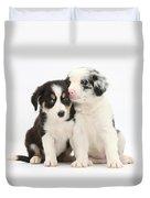 Boreder Collie Puppies Duvet Cover
