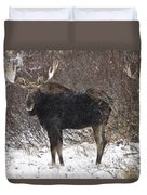 Bull Moose In Winter Duvet Cover