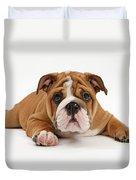 Bulldog Puppy Duvet Cover