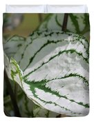 Caladium Named White Christmas Duvet Cover