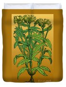 Centaurea Montana, Bachelors Button Duvet Cover