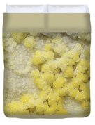 Close-up Of Yellow Salt Crystals Duvet Cover