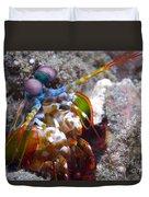 Close-up View Of A Mantis Shrimp, Papua Duvet Cover