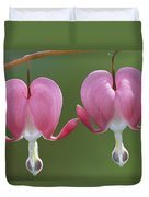 Close View Of Dutchmans Breeches, Or Duvet Cover
