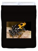 Crowned Poison Frog Duvet Cover