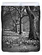Daffodils In St. James's Park Duvet Cover