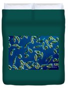 Euglena Gracilis Duvet Cover