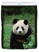 Giant Panda Ailuropoda Melanoleuca Duvet Cover