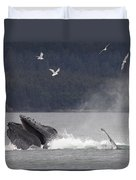 Humpback Whale Megaptera Novaeangliae Duvet Cover