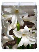 Hyacinth Named Aiolos Duvet Cover