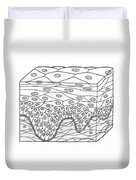 Illustration Of Stratified Squamous Duvet Cover