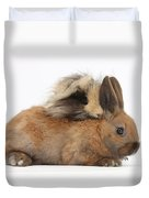 Long-haired Guinea Pig And Young Rabbit Duvet Cover
