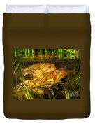 Mating Toads Duvet Cover