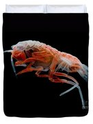 Mesopelagic Amphipod Duvet Cover