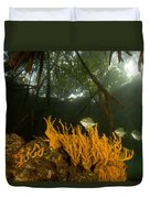 Orange Sponges Grow Duvet Cover