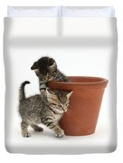 Playful Kittens Duvet Cover