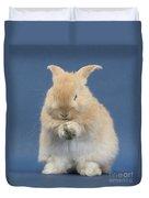 Rabbit Grooming Duvet Cover