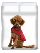 Red Toy Poodle Duvet Cover