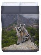 Ring-tailed Lemur Lemur Catta Mother Duvet Cover