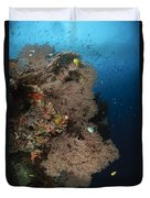 Sea Fans, Fiji Duvet Cover