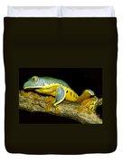 Splendid Leaf Frog Duvet Cover