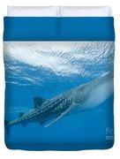 Whale Shark, Ari And Male Atoll Duvet Cover